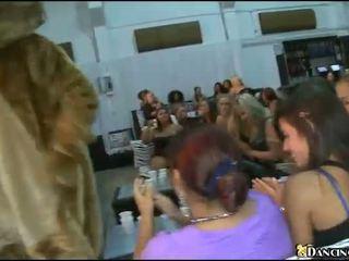 Mädchen verleih strippers