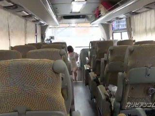 4x4 caribbean busz túra kezdődik -től fasz szopás