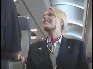 미국 사람 stewardes fantasy