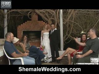 Alessandra matheus shemale matrimonio sesso