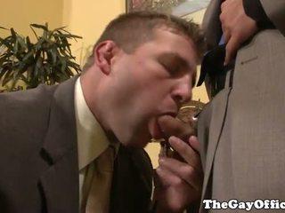 로코 reed sits 에 사무실 bosses 수탉