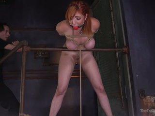 Suženj usposabljanje lauren phillips
