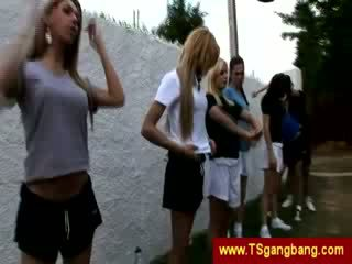 Sporty transsexuals algus hull gangbang