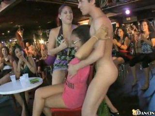 新 male stripper
