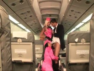 форма, air hostesses