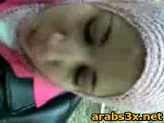 Arab tenåring suge kuk