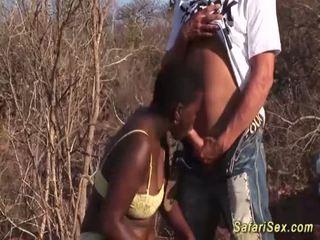 אפריקנית גרון עמוק safari אורגיה <span class=duration>- 12 min</span>