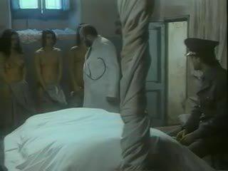 pornô, italiano, anita