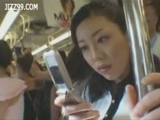 Mosaic; rondborstig anthomaniac ol in trein gives geek