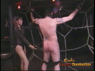 Extremely 角質 stallion likes being tied アップ と whipped