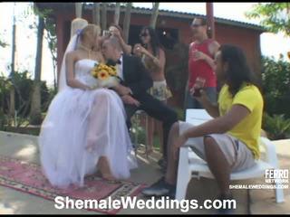 Alessandra леді хлопець наречена на відео