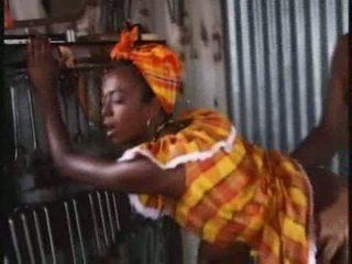 الجنس الشرجي, الأفريقي, شرجي