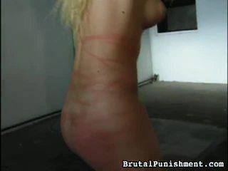 Veľký zbierka na bdsm porno klipy od brutálne punishment