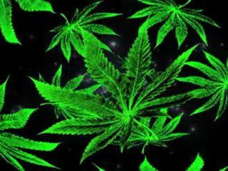punker, smoke, steen, grass