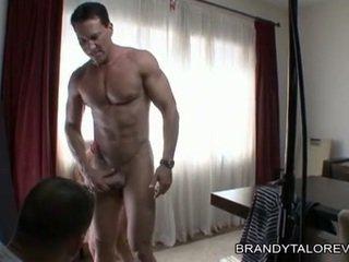 Breasty brandy taylor receives เธอ สำส่อน thumped โดย a rock ยาก ควย