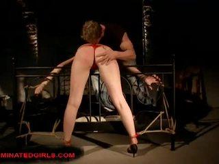 pornerbros torture de chatte