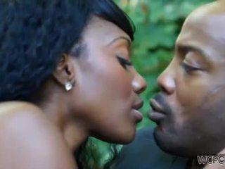 Africain sensuous est fabriqué amour
