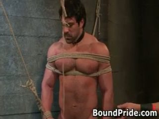 gay great, all gagged hq, full bound most