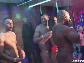 sex în grup, beat, orgie, partid