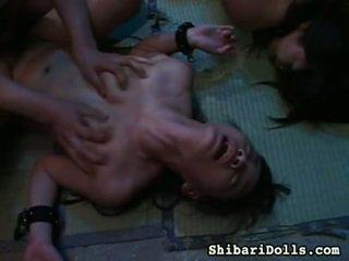 Sexy sbírka na tuk x jmenovitý porno mov od shibari dolls