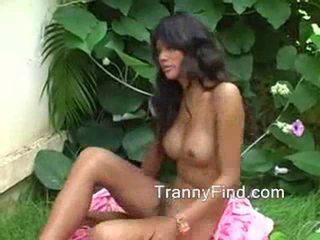 nice solo, strip you, tranny