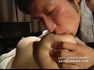 galo, japonês, esperma
