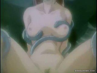 hentai, animație, desene animate