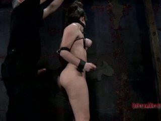 Gagged and bounded babe needs cookie pleasuring