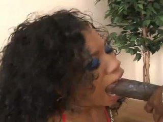 doggy style, black and ebony, anal, hd porn