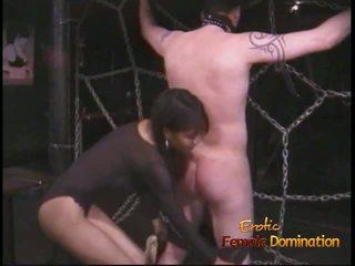 femdom, minnares, hd porn