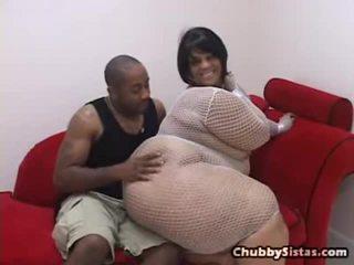 hardcore sex, chubby, blowjob