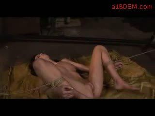 拷問, bdsm, lezdom