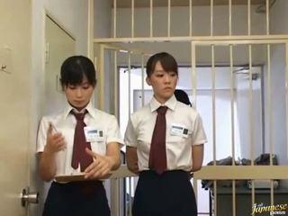 japonisht, blowjob, oriental