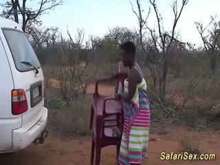 野 非洲的 safari 性別 狂歡, 免費 野 性別 高清晰度 色情 33